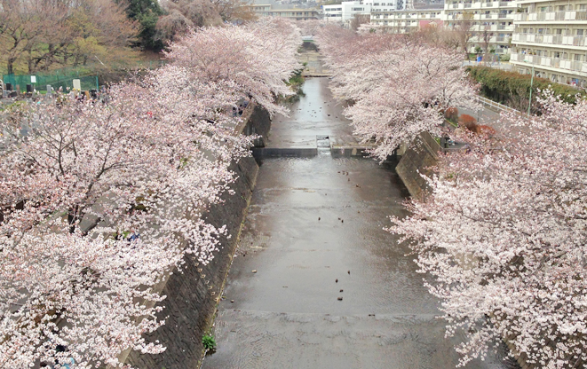 会下山橋01