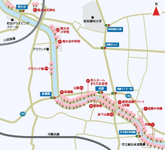 恩田川桜マップ