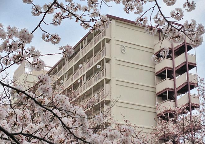 都営成瀬アパート6号館