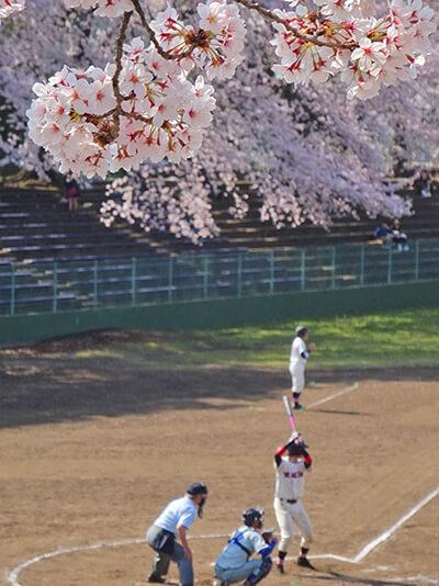町田市民球場